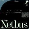 VF_NETBUS_1
